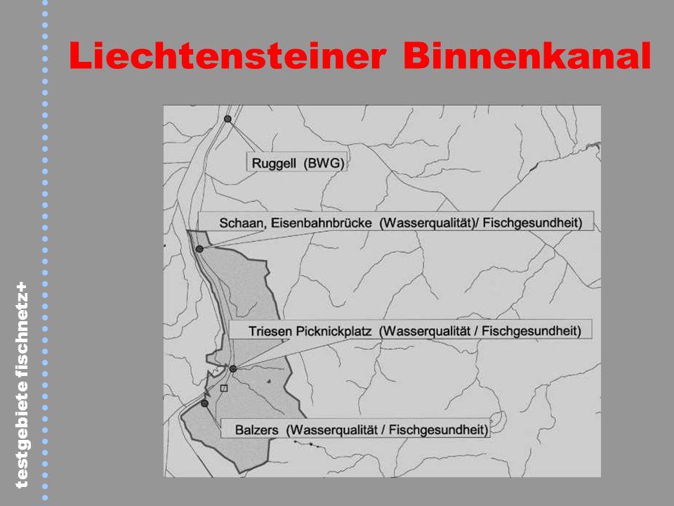 testgebiete fischnetz+ Liechtensteiner Binnenkanal