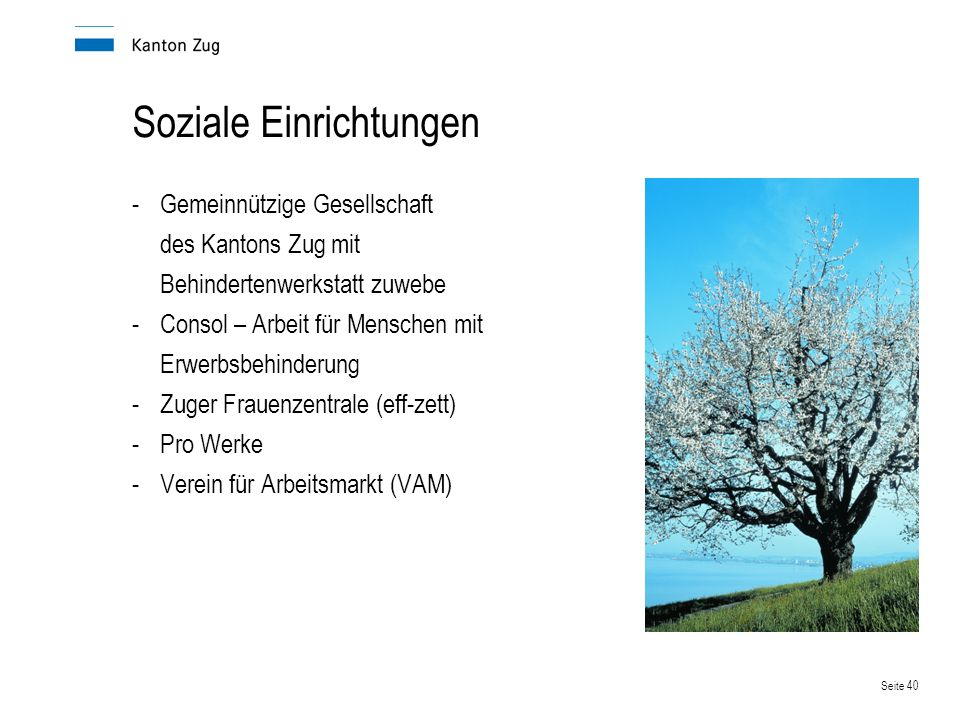 Seite 40 Soziale Einrichtungen -Gemeinnützige Gesellschaft des Kantons Zug mit Behindertenwerkstatt zuwebe -Consol – Arbeit für Menschen mit Erwerbsbe