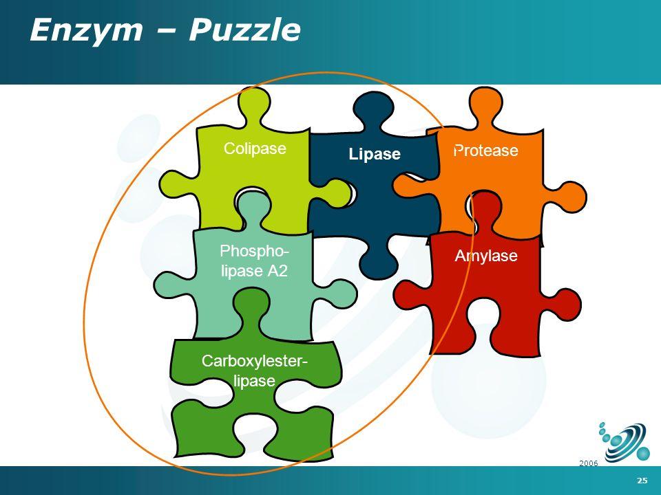 25 2006 Protease Carboxylester- lipase Lipase Colipase Phospho- lipase A2 Enzym – Puzzle Amylase