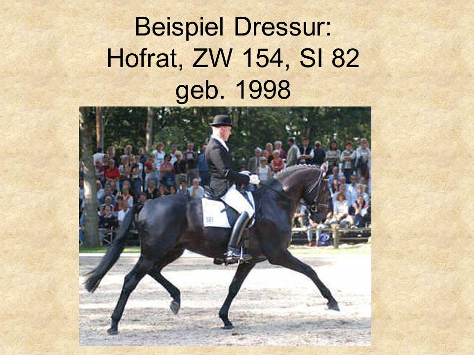 Beispiel Dressur: Hofrat, ZW 154, SI 82 geb. 1998