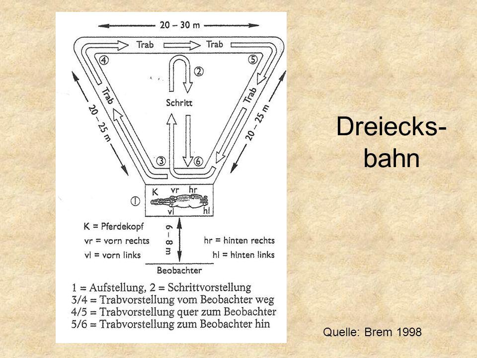Dreiecks- bahn Quelle: Brem 1998