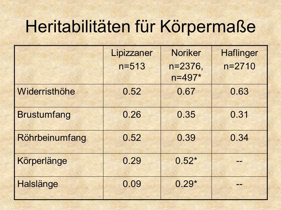 Heritabilitäten für Körpermaße Lipizzaner n=513 Noriker n=2376, n=497* Haflinger n=2710 Widerristhöhe0.520.670.63 Brustumfang0.260.350.31 Röhrbeinumfang0.520.390.34 Körperlänge0.290.52*-- Halslänge0.090.29*--