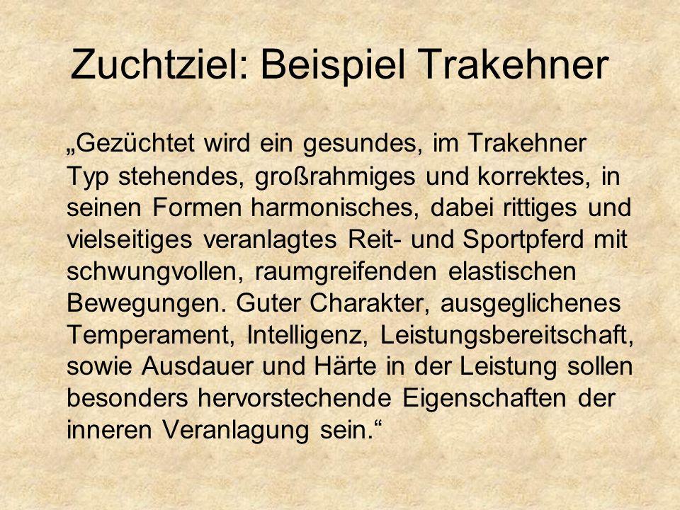 Zuchtziel Freiberger Pferd (Schweiz) Quelle (06/2007): http://www.fm-ch.ch/de/zs/II_Zuchtprogramm.pdf