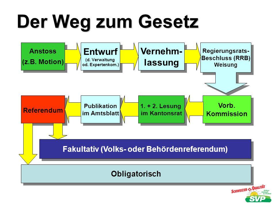 Der Weg zum Gesetz Anstoss (z.B. Motion) Anstoss (z.B. Motion) Entwurf (d. Verwaltung od. Expertenkom.) Entwurf (d. Verwaltung od. Expertenkom.) Verne