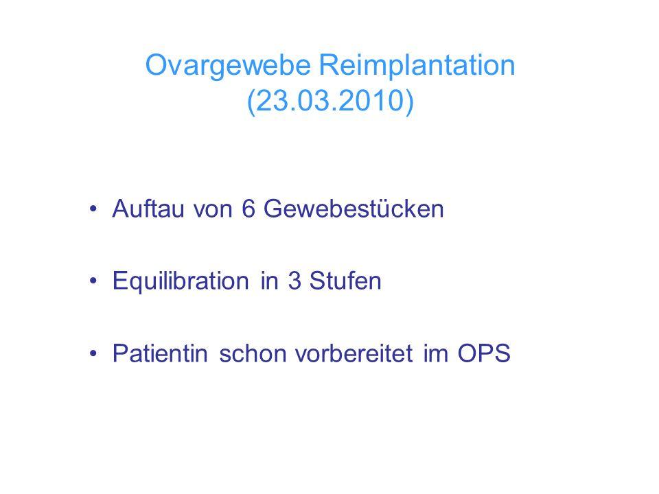 Ovargewebe Reimplantation (23.03.2010) Auftau von 6 Gewebestücken Equilibration in 3 Stufen Patientin schon vorbereitet im OPS