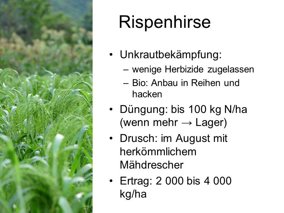 Rispenhirse Unkrautbekämpfung: –wenige Herbizide zugelassen –Bio: Anbau in Reihen und hacken Düngung: bis 100 kg N/ha (wenn mehr Lager) Drusch: im August mit herkömmlichem Mähdrescher Ertrag: 2 000 bis 4 000 kg/ha