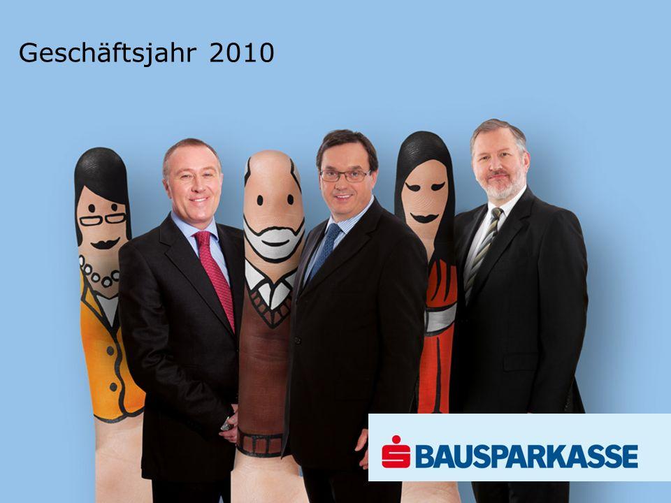 Geschäftsjahr 2010