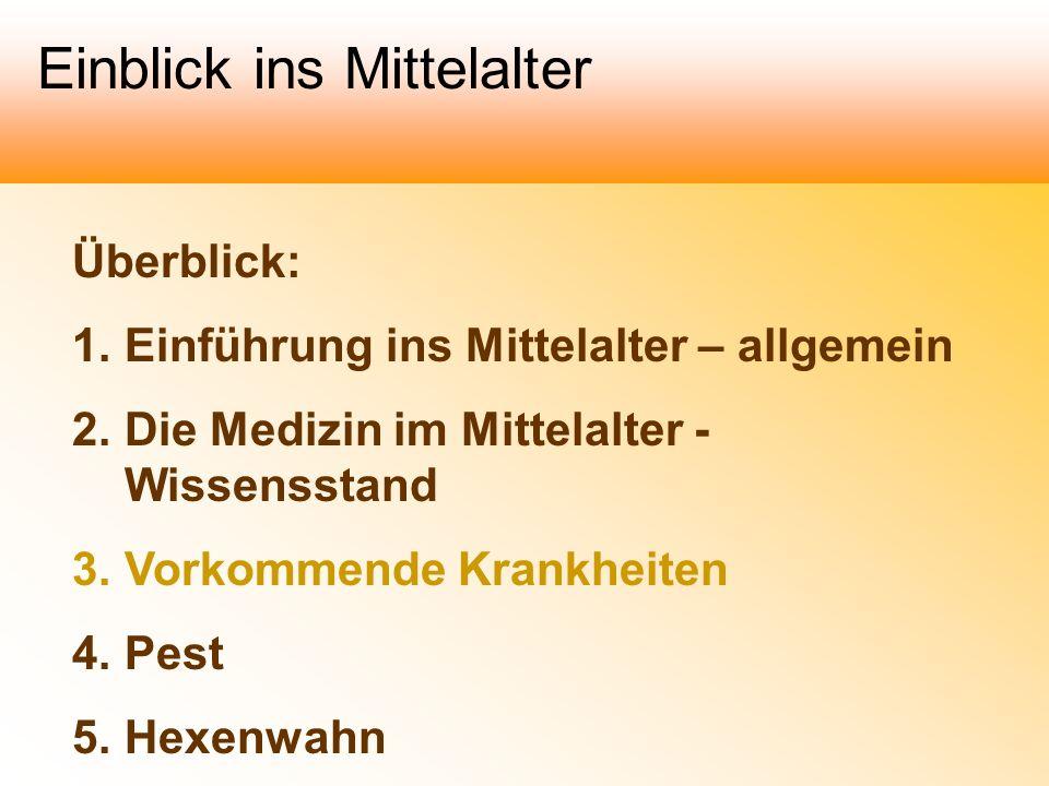 Überblick: 1.Einführung ins Mittelalter – allgemein 2.Die Medizin im Mittelalter - Wissensstand 3.Vorkommende Krankheiten 4.Pest 5.Hexenwahn Einblick