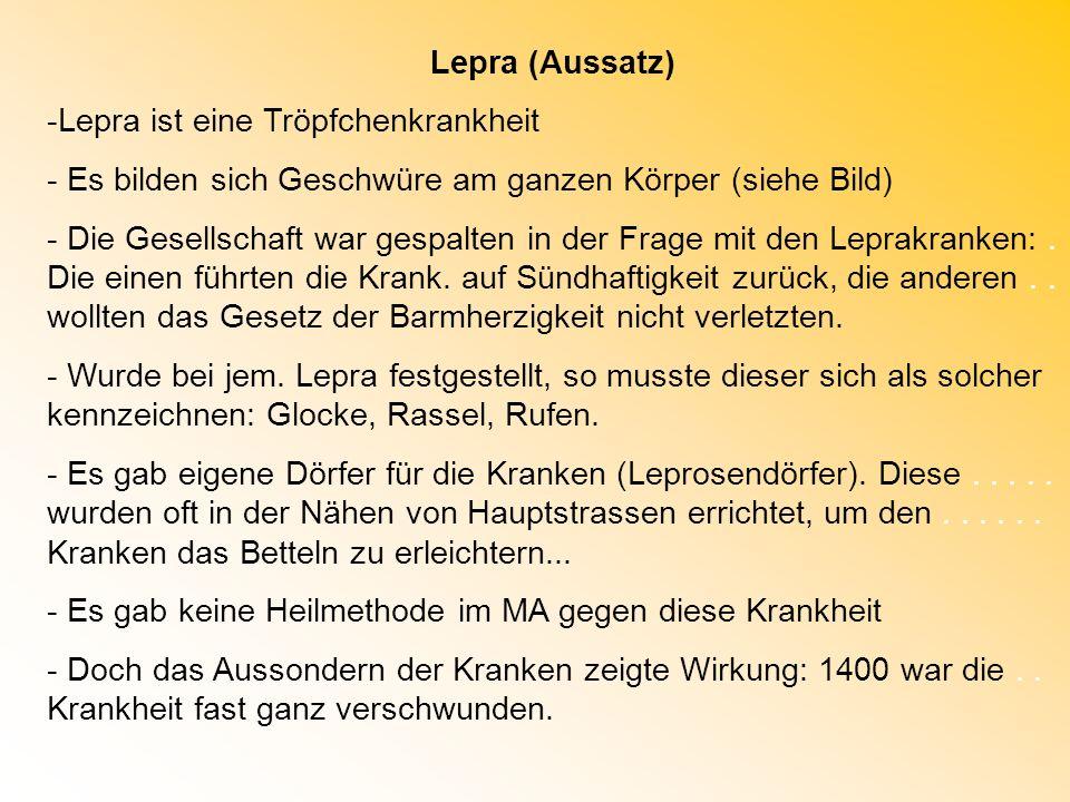 Lepra (Aussatz) -Lepra ist eine Tröpfchenkrankheit - Es bilden sich Geschwüre am ganzen Körper (siehe Bild) - Die Gesellschaft war gespalten in der Fr