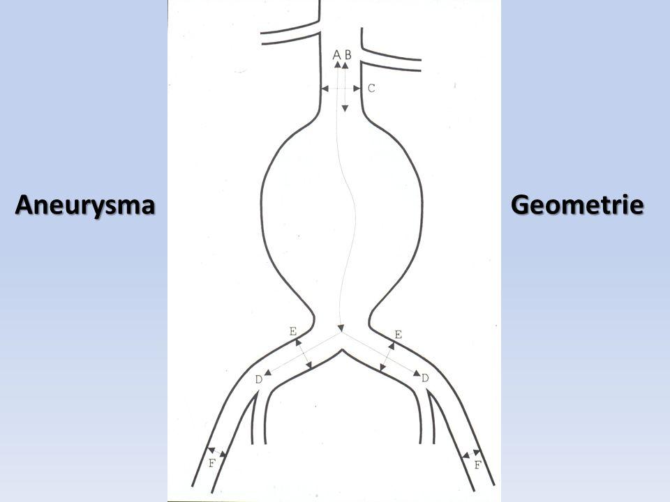 AneurysmaGeometrie