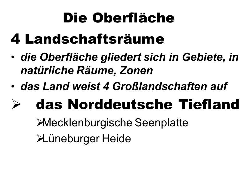 Die Oberfläche 4 Landschaftsräume die Oberfläche gliedert sich in Gebiete, in natürliche Räume, Zonen das Land weist 4 Großlandschaften auf das Norddeutsche Tiefland Mecklenburgische Seenplatte Lüneburger Heide