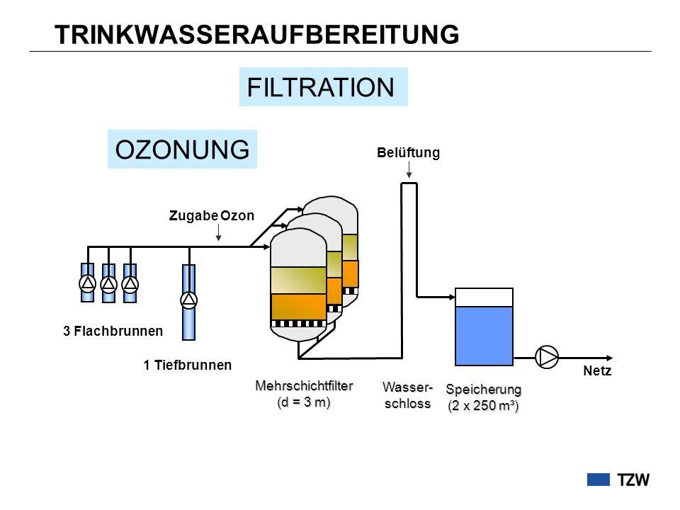 TRINKWASSERAUFBEREITUNG Netz Mehrschichtfilter (d = 3 m) Zugabe Ozon 3 Flachbrunnen 1 Tiefbrunnen Belüftung Speicherung (2 x 250 m³) Wasser- schloss O