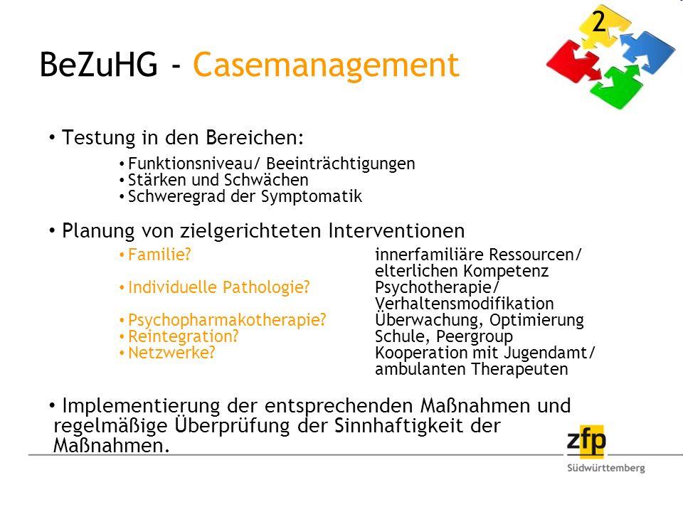 BeZuHG - Casemanagement Testung in den Bereichen: Funktionsniveau/ Beeinträchtigungen Stärken und Schwächen Schweregrad der Symptomatik Planung von zielgerichteten Interventionen Familie.