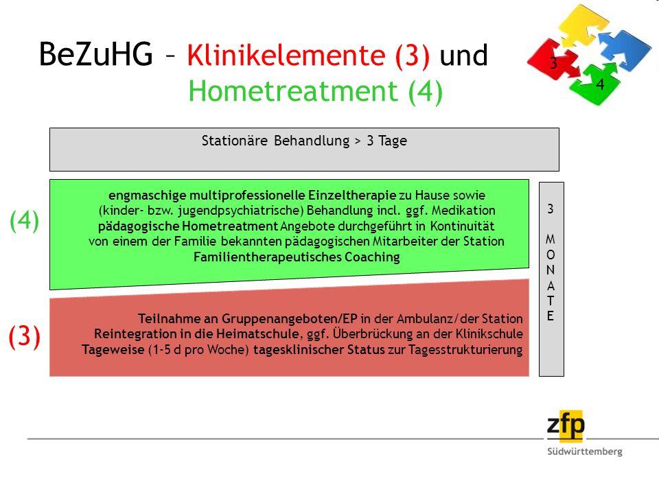 engmaschige multiprofessionelle Einzeltherapie zu Hause sowie (kinder- bzw.