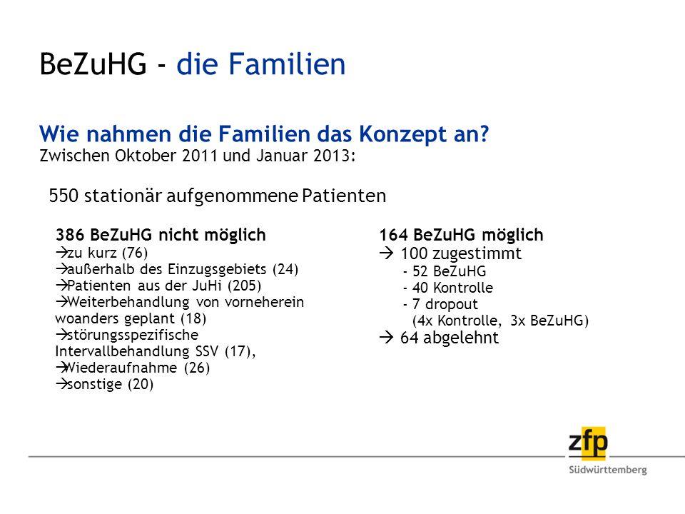 BeZuHG - die Familien Wie nahmen die Familien das Konzept an.