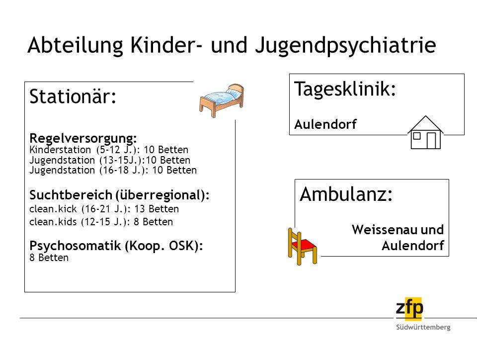 Stationär: Regelversorgung: Kinderstation (5-12 J.): 10 Betten Jugendstation (13-15J.):10 Betten Jugendstation (16-18 J.): 10 Betten Suchtbereich (überregional): clean.kick (16-21 J.): 13 Betten clean.kids (12-15 J.): 8 Betten Psychosomatik (Koop.