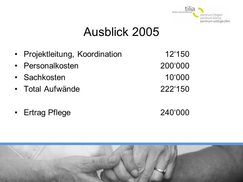 Ausblick 2005 Projektleitung, Koordination 12150 Personalkosten 200000 Sachkosten 10000 Total Aufwände222150 Ertrag Pflege240000