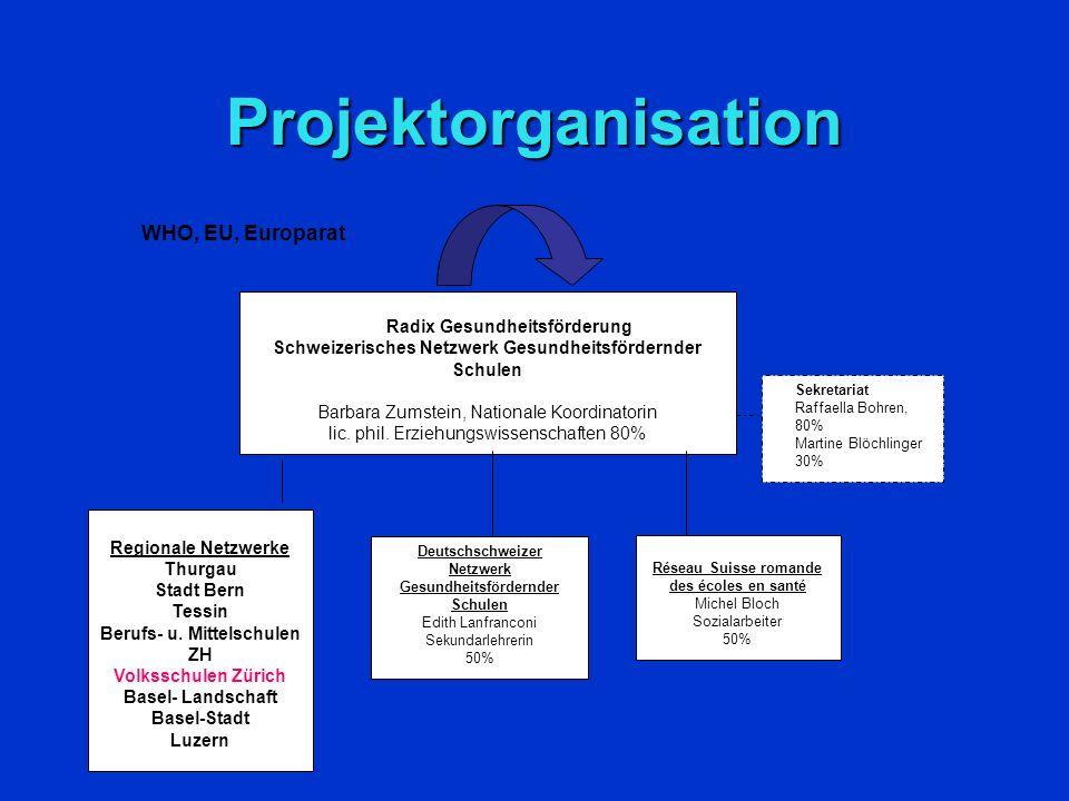 Angebote des SNGS – auch für Schulen der regionalen Netzwerke Arbeitsinstrumente Erfahrungsaustausch (fakultativ) Impulstagungen Dokumentation Spezifische Beratung Datenbank Newsletter Label Zugang zu europäi- schen Projekten Finanzielle Projektunterstützung (nur für Alumni Schulen)