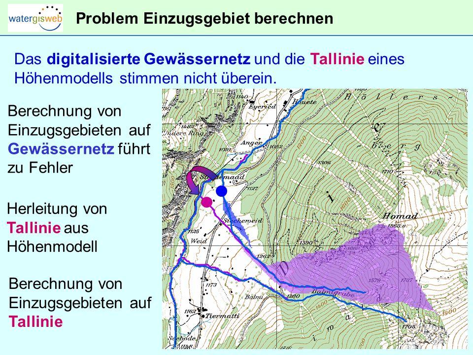 Problem Einzugsgebiet berechnen Das digitalisierte Gewässernetz und die Tallinie eines Höhenmodells stimmen nicht überein.