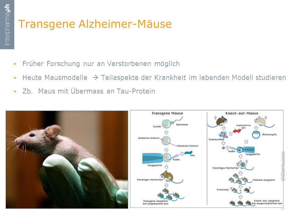 Früher Forschung nur an Verstorbenen möglich Heute Mausmodelle Teilaspekte der Krankheit im lebenden Modell studieren Zb. Maus mit Übermass an Tau-Pro