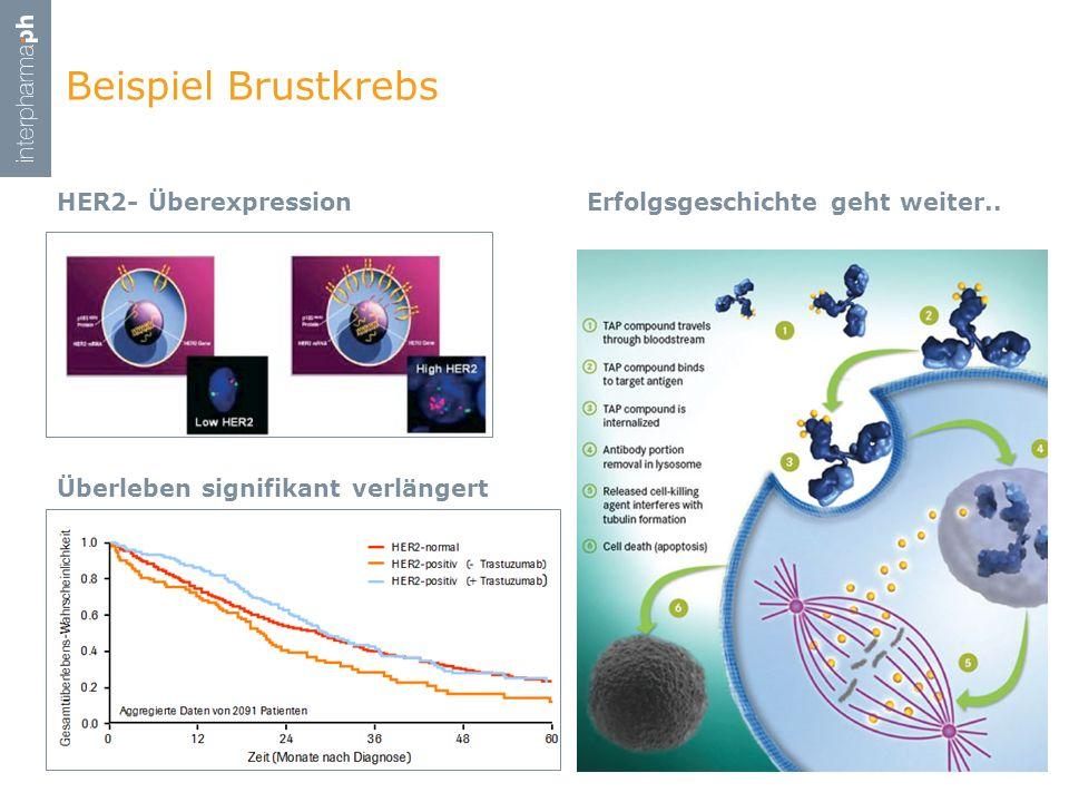 HER2- Überexpression Beispiel Brustkrebs 2. März 201131 Überleben signifikant verlängert Erfolgsgeschichte geht weiter..