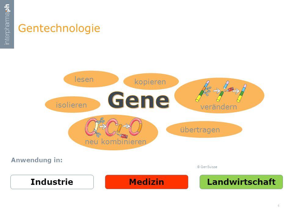 ..Entdeckung Bakterienzellen, Penicillin, DNA als Trägerin der Erbinformation, DNA-Struktur..