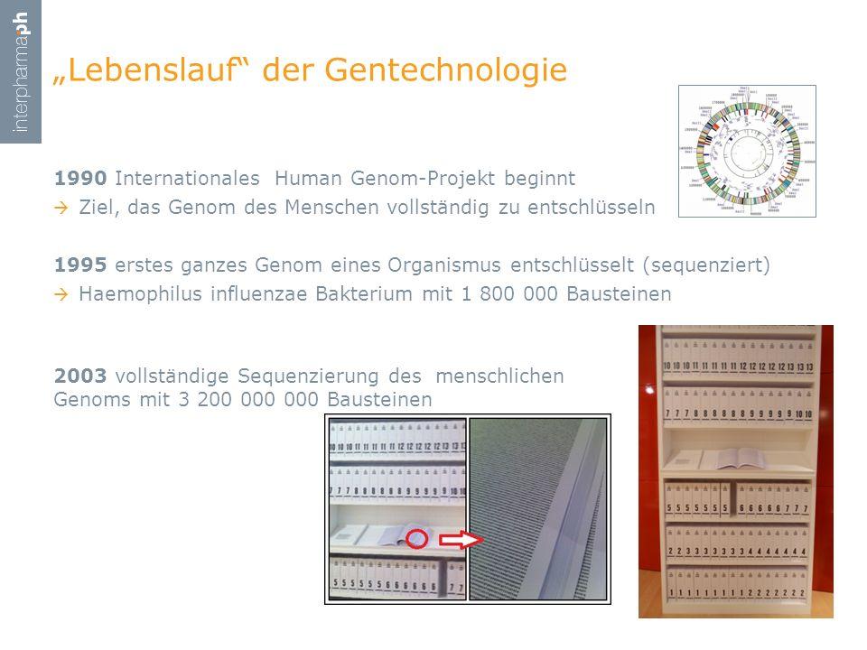 1990 Internationales Human Genom-Projekt beginnt Ziel, das Genom des Menschen vollständig zu entschlüsseln 1995 erstes ganzes Genom eines Organismus e