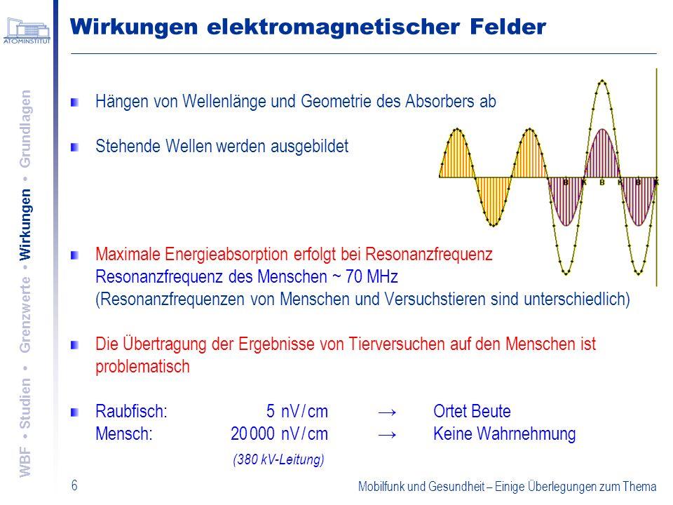 Mobilfunk und Gesundheit – Einige Überlegungen zum Thema 6 Wirkungen elektromagnetischer Felder Hängen von Wellenlänge und Geometrie des Absorbers ab
