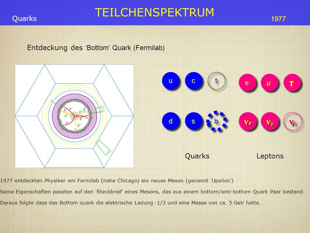 TEILCHENSPEKTRUM Entdeckung desBottom Quark (Fermilab) Quarks 1977 entdeckten Physiker am Fermilab (nahe Chicago) ein neues Meson (genannt Upsilon ) Seine Eigenschaften passten auf den Steckbrief eines Mesons, das aus einem bottom/anti-bottom Quark Paar bestand.
