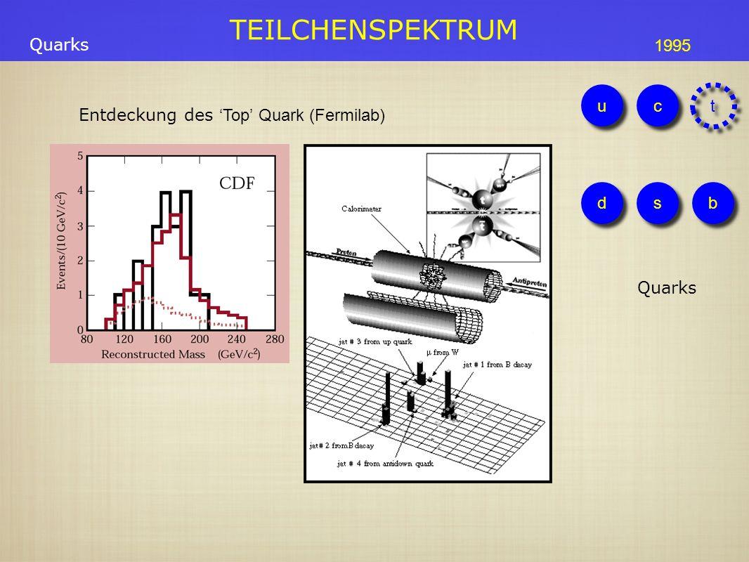 1900 1910 1920 1930 1940 1950 1960 1970 1980 1990 2000 2010 FelderTeilchen Elektro- magnetismus Spezielle Relativität Quantenmechanik Welle-Teilchen Dualismus Spin/Fermion-Boson Antimaterie W Bosons QED Maxwell SUSY Higgs Superstrings Universum Newton Kinetische Gastheorie Brownsche Bewegung Allgemeine Relativität Big Bang Nukleosynthese Inflation Atom Kern e-e-e-e- p+p+p+p+ n Teilchen- zoo u μ -μ -μ -μ - π νeνeνeνe νμνμνμνμ ντντντντ ds c τ-τ-τ-τ- τ-τ-τ-τ- b t Galaxien; Ausdehnung des Universums Kernfusion Kosmische Hintergrundstrahlung GUT ν Masse QCDFarbladung Dunkle Energie Dunkle Materie WZ g Photon Schwache WW +e++e+ -p--p- Fermi Theorie Yukawa π Austausch Boltzmann Radio- aktivität Technologien Geiger Wolken Blasenkammer Zyklotron DetektorBeschleuniger Höhen- strahlung Synchrotron e + e - Ring p + p - Ring Strahlkühlung Vieldrahtkammer Prozessrechner WWW GRID Moderne Detektoren P, C, CP Verletzung STANDARD MODEL EW Vereinigung 3 Teilchenfamilien Inhomogenität der Hintergrundstrahlung(C OBE, WMAP) 1895 1905 1975 Elektromagnetismus Starke WW Neutrino trail