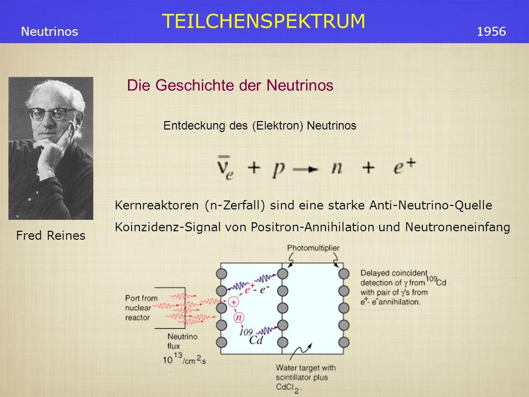 TEILCHENSPEKTRUM Fred Reines Neutrinos1956 Entdeckung des (Elektron) Neutrinos Kernreaktoren (n-Zerfall) sind eine starke Anti-Neutrino-Quelle Koinzidenz-Signal von Positron-Annihilation und Neutroneneinfang Die Geschichte der Neutrinos