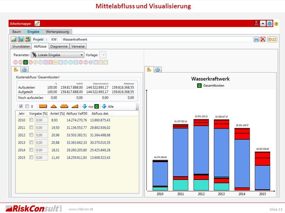 Slide 13 www.riskcon.at Mittelabfluss und Visualisierung
