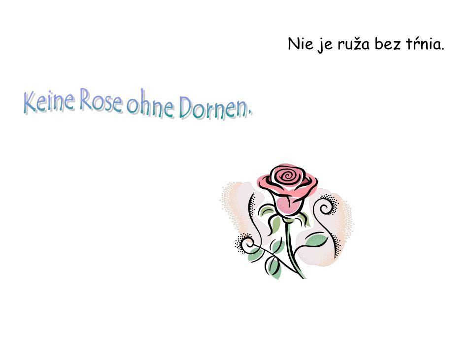 Nie je ruža bez tŕnia.