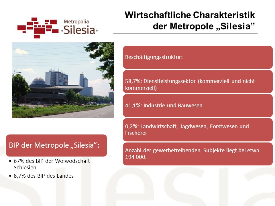 Wirtschaftliche Charakteristik der Metropole Silesia Beschäftigungsstruktur:58,7%: Dienstleistungssektor (kommerziell und nicht kommerziell) 41,1%: Industrie und Bauwesen 0,2%: Landwirtschaft, Jagdwesen, Forstwesen und Fischerei Anzahl der gewerbetreibenden Subjekte liegt bei etwa 194 000.