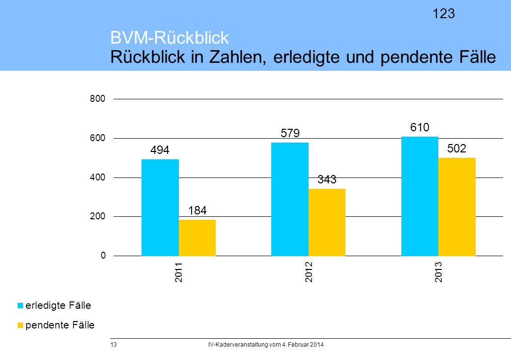 123 IV-Kaderveranstaltung vom 4. Februar 201413 BVM-Rückblick Rückblick in Zahlen, erledigte und pendente Fälle