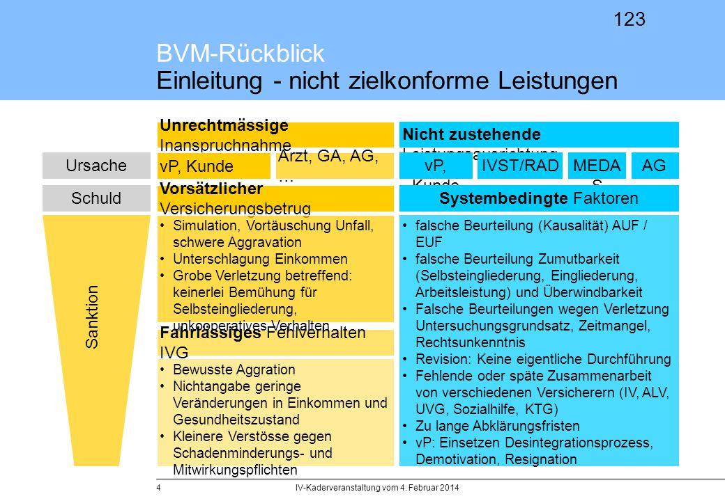 123 BVM-Rückblick Einleitung - nicht zielkonforme Leistungen IV-Kaderveranstaltung vom 4. Februar 20144 Unrechtmässige Inanspruchnahme Nicht zustehend