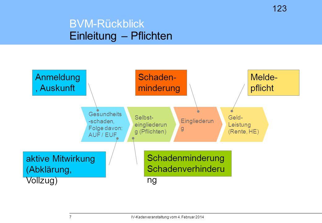 123 BVM-Rückblick Einleitung – Pflichten IV-Kaderveranstaltung vom 4. Februar 20147 Gesundheits -schaden, Folge davon: AUF / EUF Selbst- eingliederun