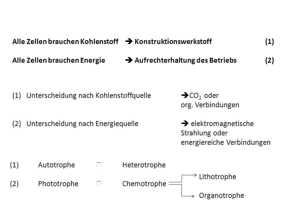 Alle Zellen brauchen Kohlenstoff Konstruktionswerkstoff (1) Alle Zellen brauchen Energie Aufrechterhaltung des Betriebs(2) (1)Unterscheidung nach Kohlenstoffquelle CO 2 oder org.