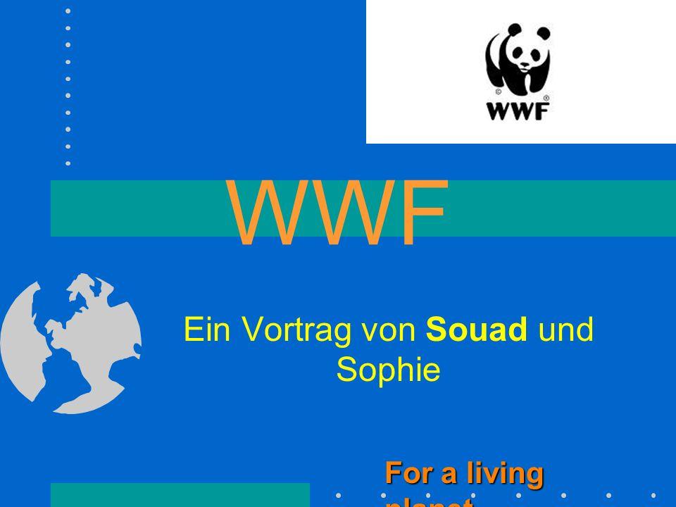 WWF Ein Vortrag von Souad und Sophie For a living planet