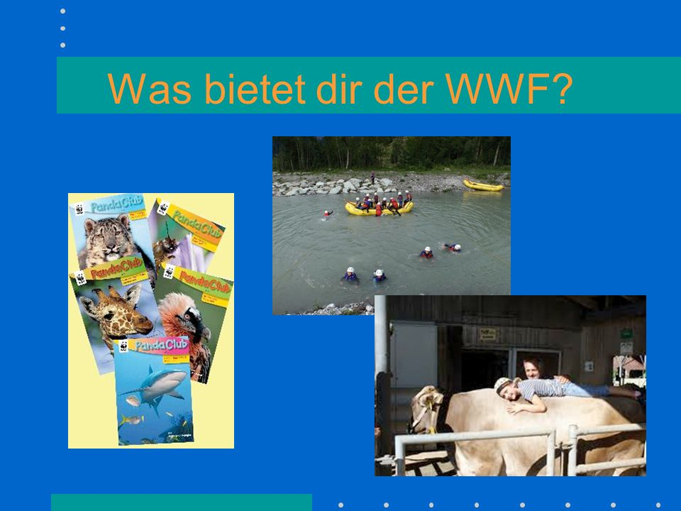 Was bietet dir der WWF?