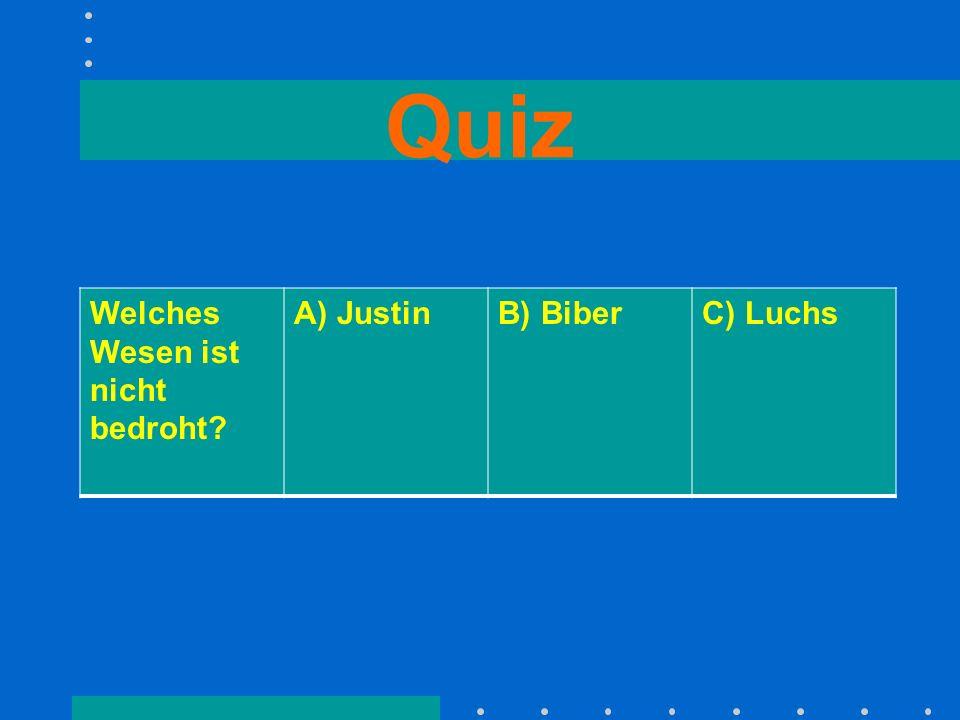 Quiz Welches Wesen ist nicht bedroht? A) JustinB) BiberC) Luchs