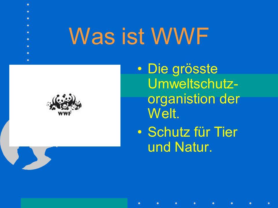 Was heisst WWF? Früher: World Wildlife Fund Ab 1986: World Wide Fund for Nature