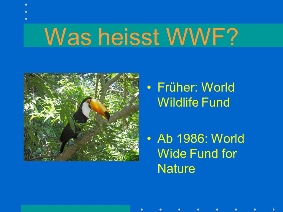 Was heisst WWF? Früher: World Wildlife Fund Ab 1986: World Wide Fund for Nature
