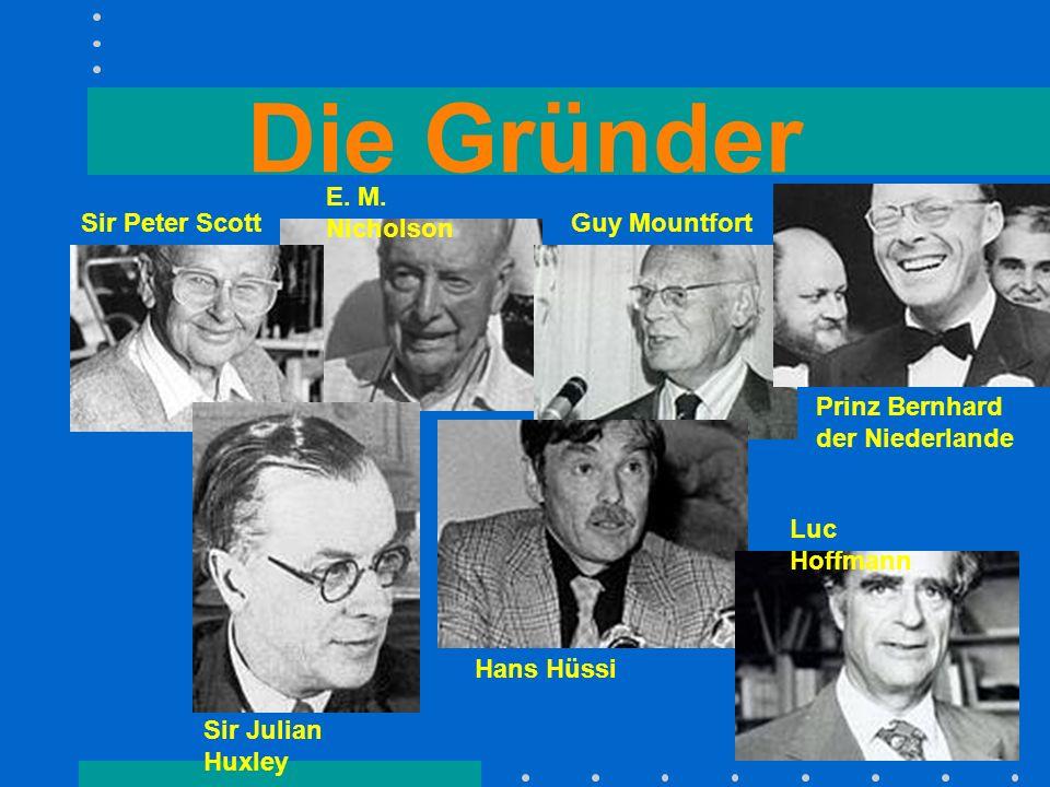 Die Gründer E. M. Nicholson Sir Peter ScottGuy Mountfort Prinz Bernhard der Niederlande Hans Hüssi Luc Hoffmann Sir Julian Huxley