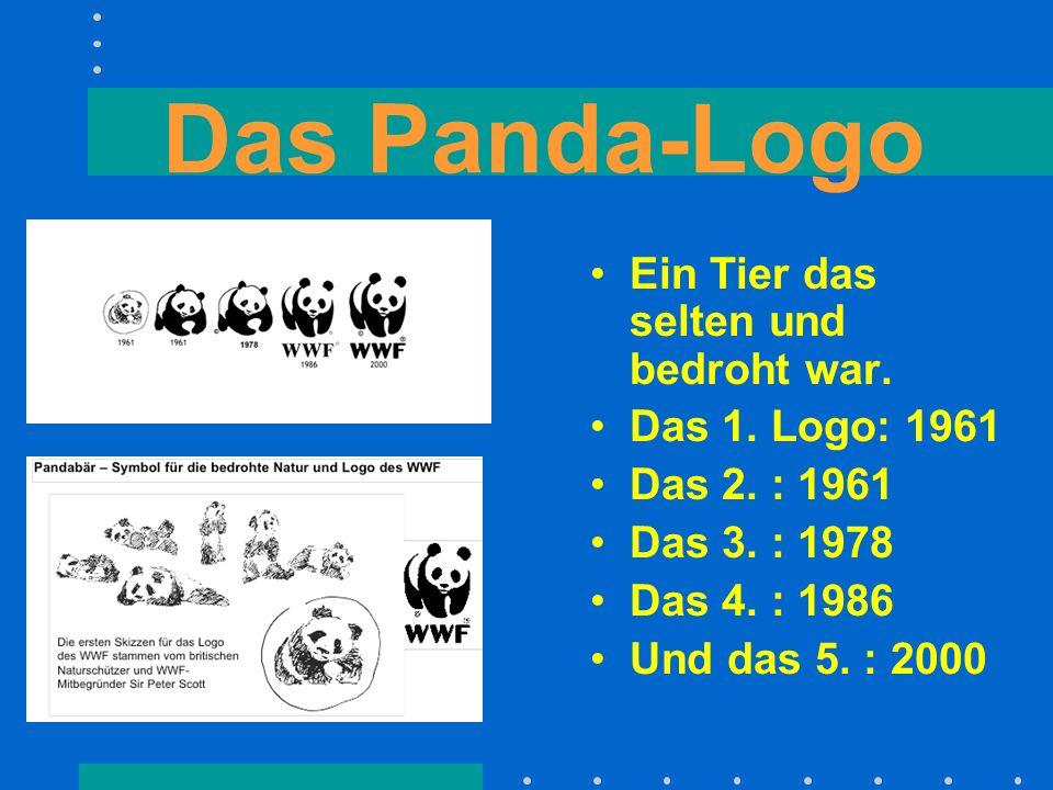 Das Panda-Logo Ein Tier das selten und bedroht war. Das 1. Logo: 1961 Das 2. : 1961 Das 3. : 1978 Das 4. : 1986 Und das 5. : 2000