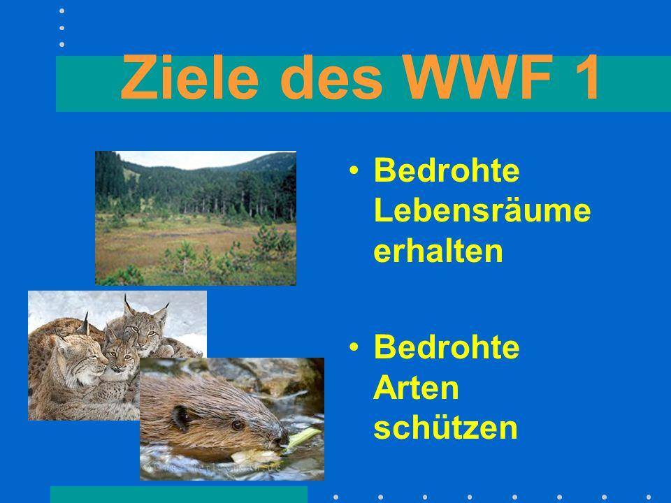 Ziele des WWF 2 Die Natur schonend nutzen. Die Umweltver- schmutzung ein- dämmen