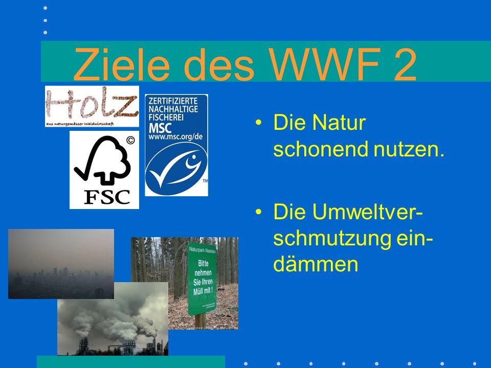 QUIZ Was ist WWF.