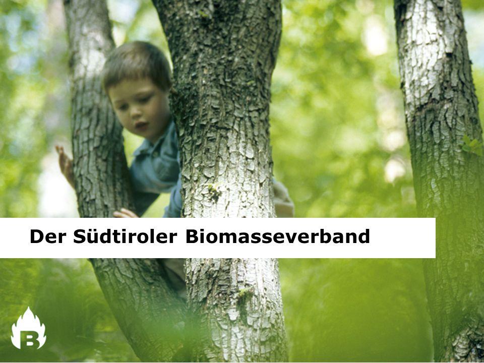 Der Rohstoff Holz Der Wald ist Lebensraum und Schutz, Ort der Stille, der Wildnis, aber auch ein wichtiger wirtschaftlicher Faktor.