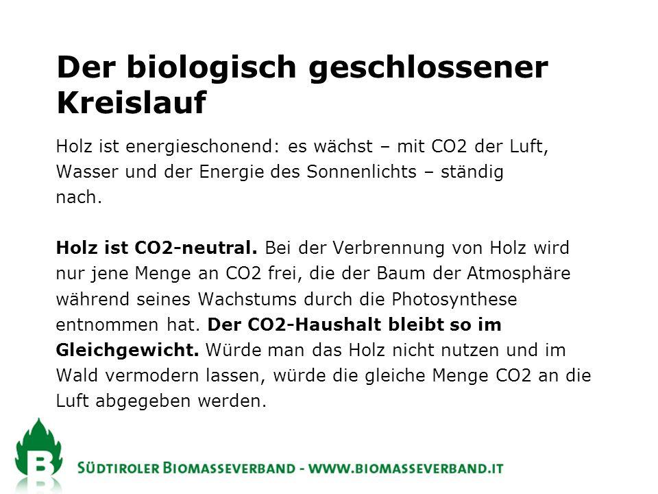 Holz ist energieschonend: es wächst – mit CO2 der Luft, Wasser und der Energie des Sonnenlichts – ständig nach.