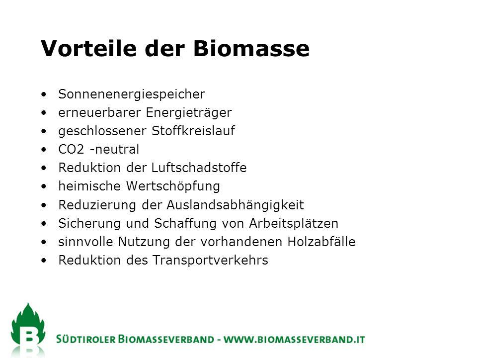 Vorteile der Biomasse Sonnenenergiespeicher erneuerbarer Energieträger geschlossener Stoffkreislauf CO2 -neutral Reduktion der Luftschadstoffe heimische Wertschöpfung Reduzierung der Auslandsabhängigkeit Sicherung und Schaffung von Arbeitsplätzen sinnvolle Nutzung der vorhandenen Holzabfälle Reduktion des Transportverkehrs